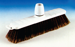Domestic Broom (Syn)