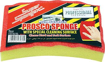 Professional Non Scratch Prosco Sponge